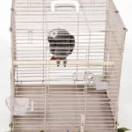 A&E Cage Co. Collapsible Parrot Transport cage