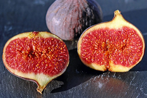Fig fruits for parrots