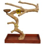 Java wood table top tree stand for birds