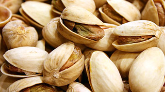 Pistachios start to split open on the tree when ripe